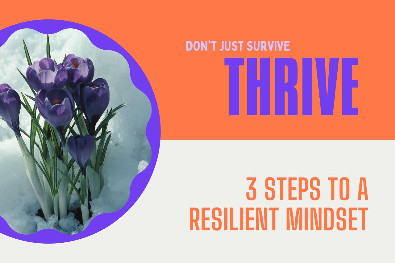 Managing Adversity: The Resilience Mindset